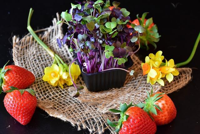 Strawberries, Cress, Sango Radish Cress, Spring, Eat