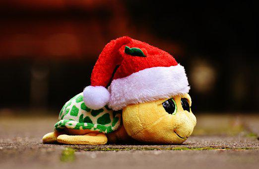 Christmas, Turtle, Stuffed Animal, Soft Toy, Santa Hat