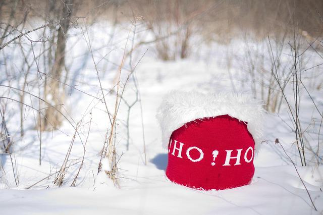 Hat, Santas Has, Christmas, Xmas, Hohoho