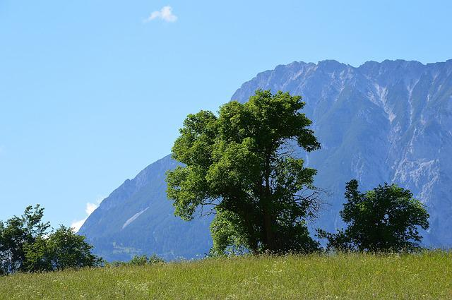 Sautens, Mountains, Alpine, View, Alm, Oetztal, Nature