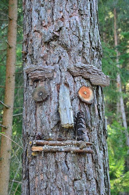 Wish Tree, Tyrol, Austria, Sautens