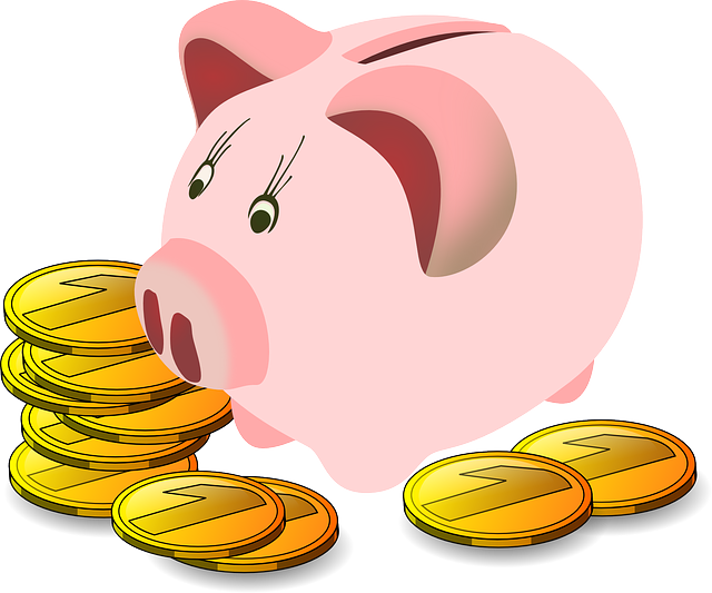 Savings Box, Pig, Piggy Bank, Money, Savings, Finance