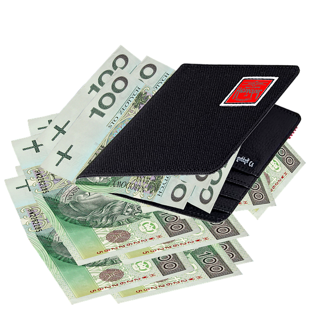 Wallet, Jeans, Money, Currency, Pay, Polish, Savings
