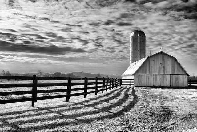 Monochrome, Black And White, Scenery, Landscape