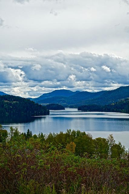 Wilderness, River, Scenery, Nature, Landscape