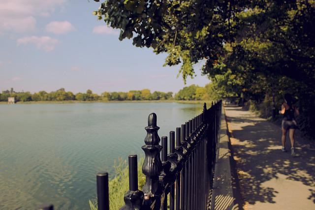 New York, Color, Tabitha, Lake, Fence, Nature, Scenery