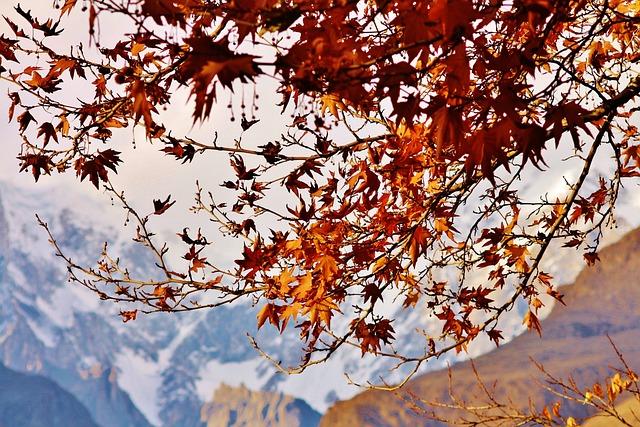 Mountain, Autumn, Scenic, Sky, Tourist, Travel, Ice