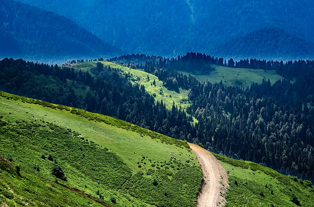 Russia, Landscape, Scenic, Valley, Mountains, Forest