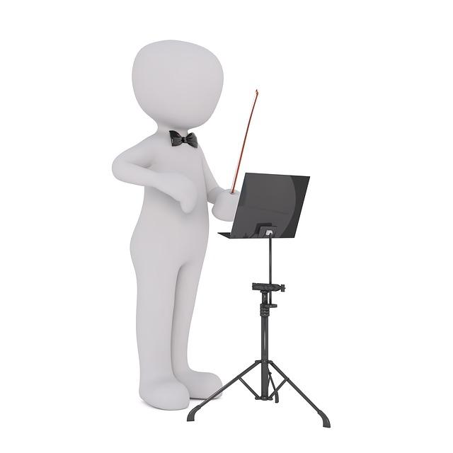 Orchestra, Orchestra Pit, Conductor, Head, Schaffner
