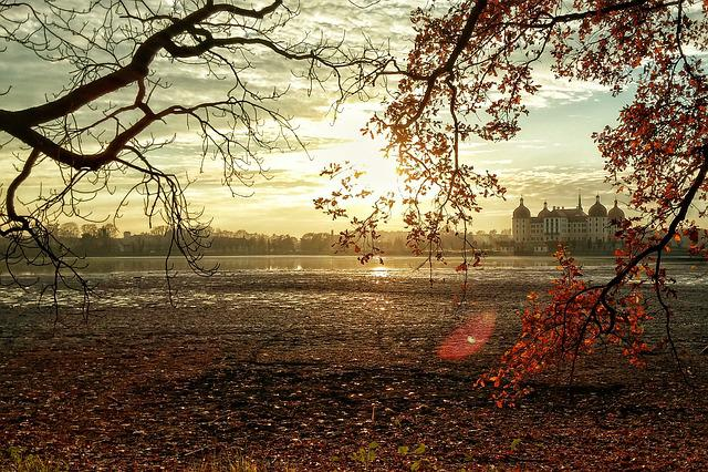 Moritz Castle, Castle, Saxony, Schlossgarten