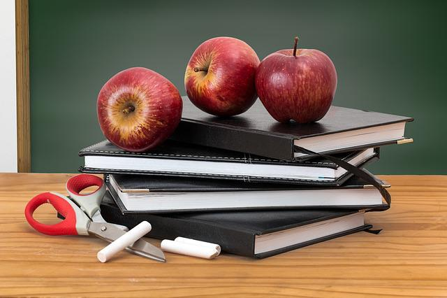 School, Books, Apples, Blackboard, Green Board