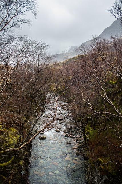 Scotland, Water, Lake, Trees, Nature, Bank, Ship
