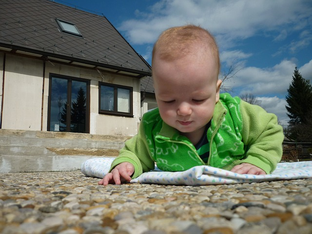 Scout, One, Traveler, Stones, Toddler, Child, Baby, Boy