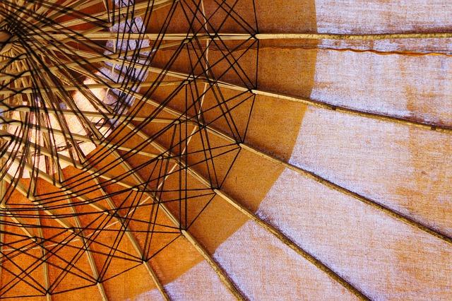 Screen, Parasol, From The Bottom, Shade Tree