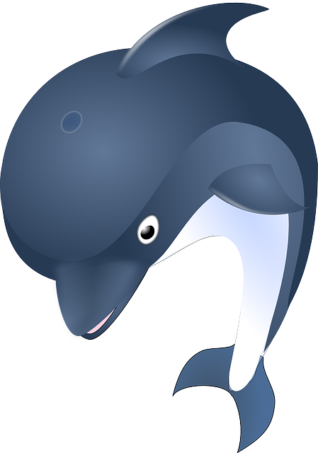 Dolphin, Ocean, Animal, Mammal, Sea, Water, Fish