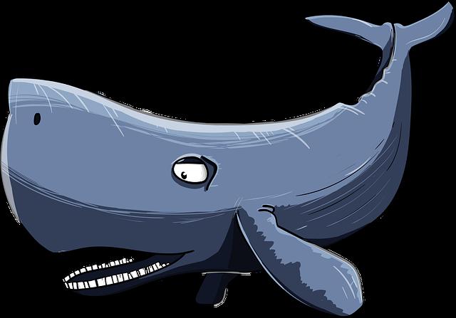 Sperm Whale, Kit, Cartoon, Floaters, Sea Giant
