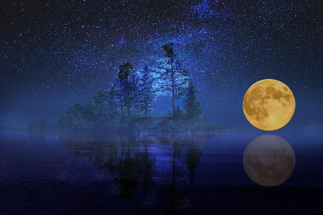 Full Moon, Landscape, Sea, Lake, Island, Bank, Trees