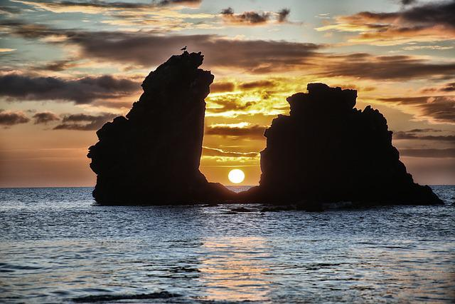 Sunrise, Body Of Water, Sea, Morning, Nature, Bird