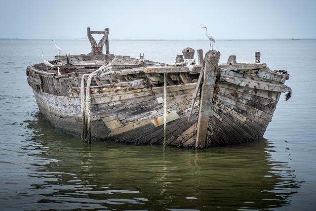 Sea, Water, Nature, Boat, Fishing, Ocean, Bird, Old