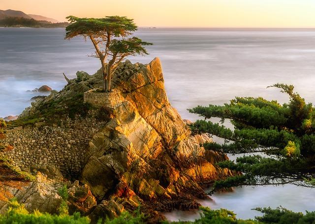 Pebble Beach, California, Sea, Ocean, Pacific, Water