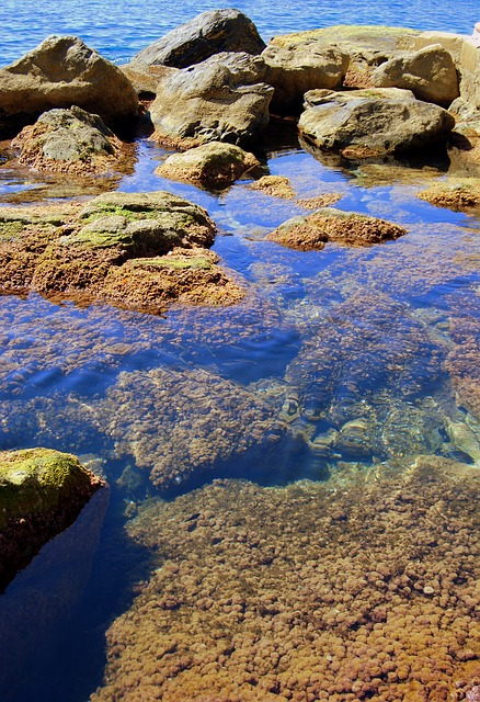 Rocks, Cliff, Transparent, Water, Sea, Clear, Costa