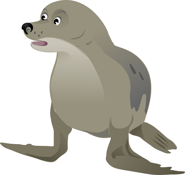 Seadog, Seal, Grey, Animal, Sea Life, Ocean, Sea