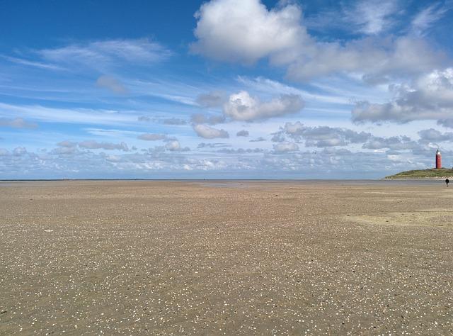 Texel, Lighthouse, Sea, Beach, Ebb