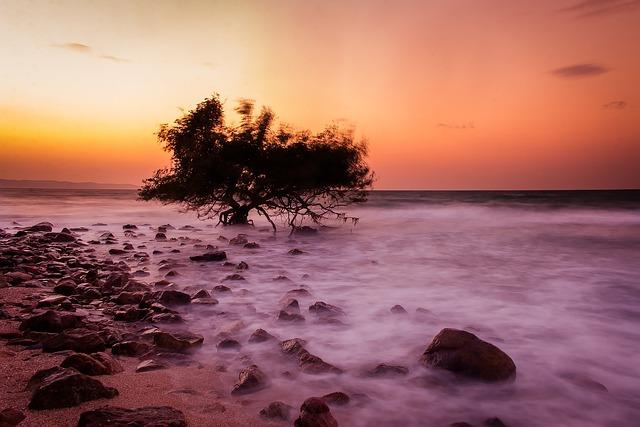 Sea, Wave, Holidays, Thailand, Tour, Koh Larn