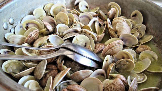 Steamed Clams, Fresh, Fish, Seafood, Italy, Sea Food