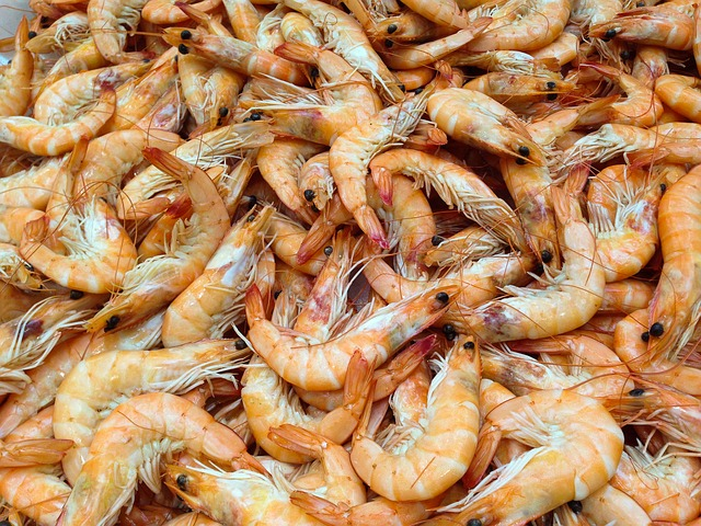 Shrimp, Crustaceans, Sea, Seafood