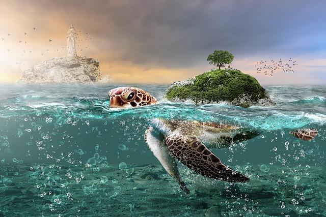 Water, Sea, Nature, Summer, Ocean, Seashore, Beach