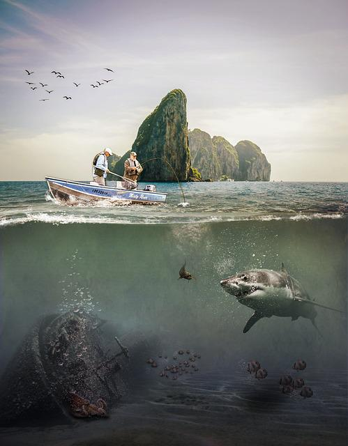 Ocean, Waterpolo, Seaside, The Sea, Water