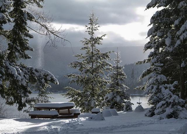 Winter, Season, Cold, Snow, Icy, Landscape, Scenery