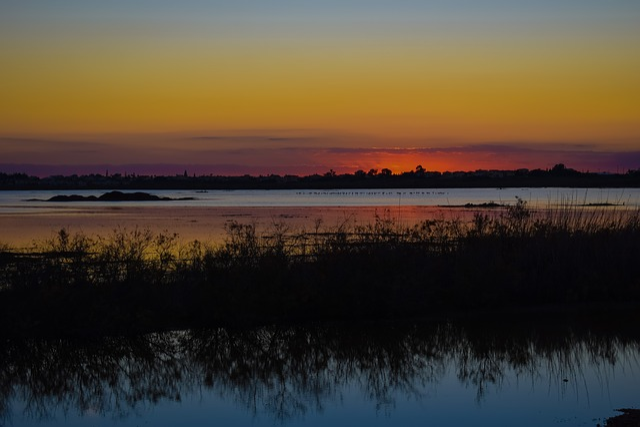 Seasonal Lake, Wetland, Sunset, Migratory Birds