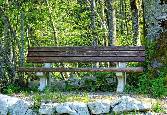 Bench, Bank, Nature, Seat, Out, Forest, Trees, Rest