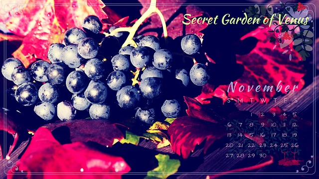 Secret Garden Of Venus, Calendar, November, Grapes