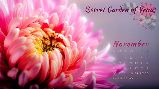 Secret Garden Of Venus, Calendar, November