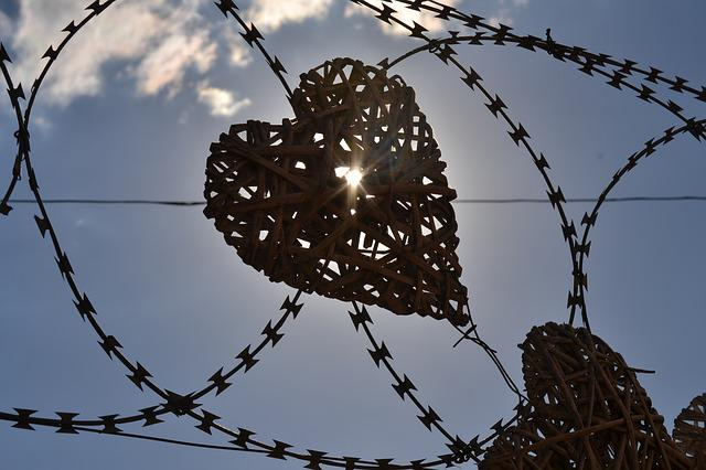 Heart, Security Fence, Sunlight, Decoration