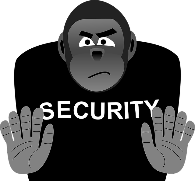 Security, Bouncer, Strong, Security Staff, Staff