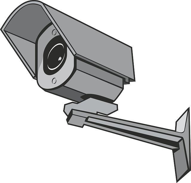 Surveillance, Camera, Security, Video