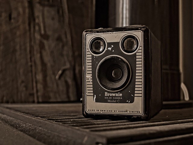 Vintage, Camera, Kodak, Brownie, Box, Six-20, Sepia