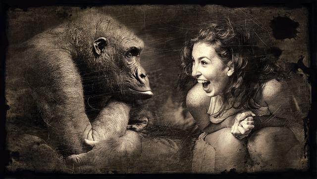 Composing, Monkey, Woman, Laugh, Sepia, Brown, Gorilla