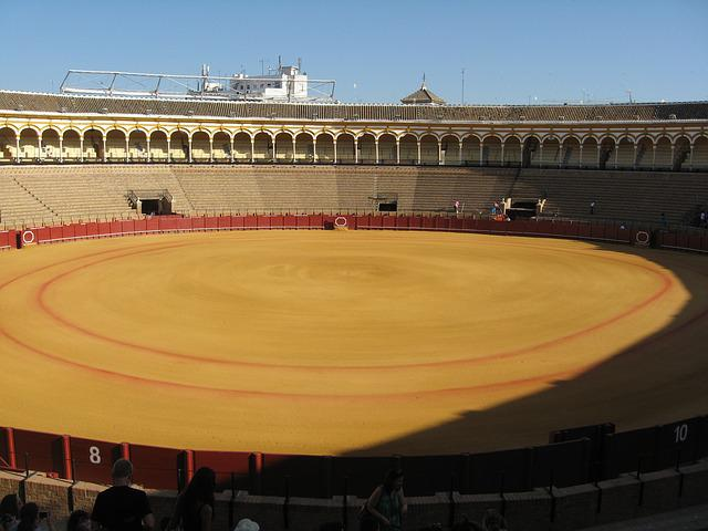 Bullring, Bullfighting, Seville, Andalusia, Spain