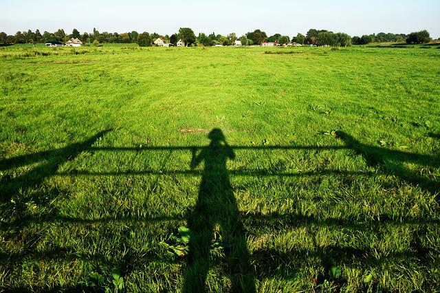 Shadow, Person, Sunlight, Field, Landscape, Skyline