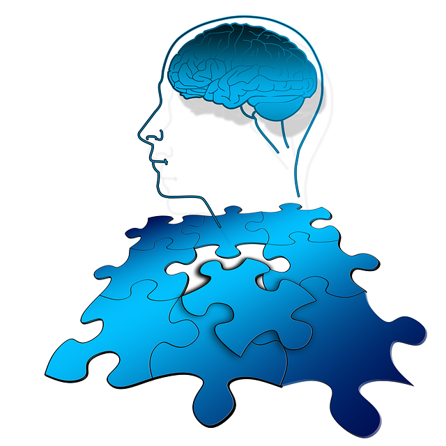 Puzzle, Share, Think, Brain, Thinking, Function