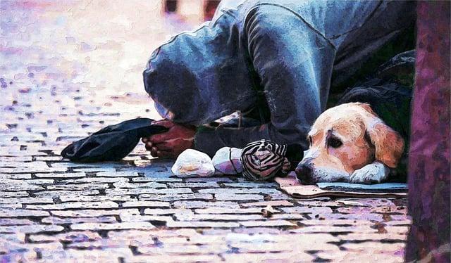 Share, The, Pain, 同甘共苦, Prague, Homeless, Poverty