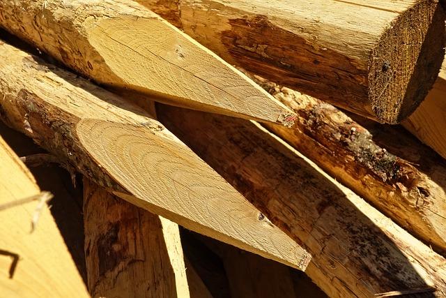 Log, Wood, Cut, Lumber, Sharpened, Pointed