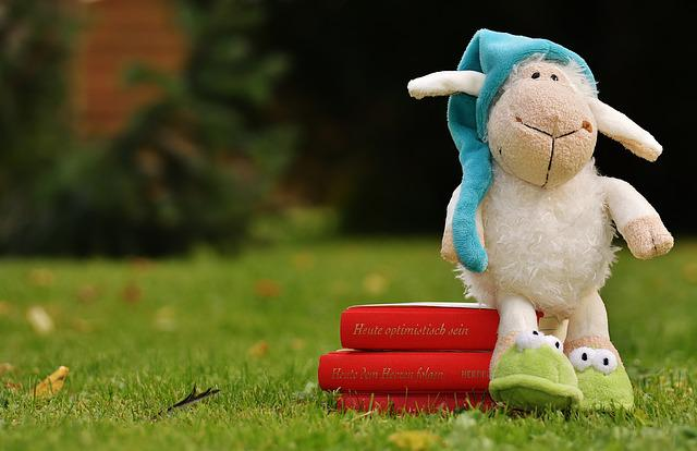 Sheep, Sleepyhead, Meadow, Plush, Books