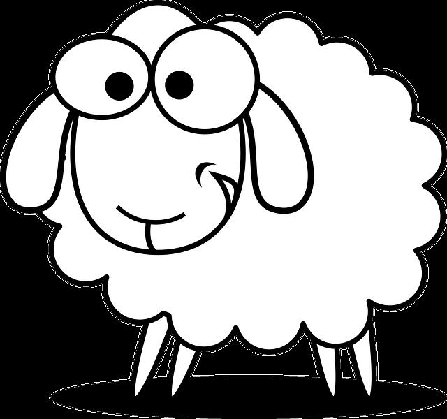 Sheep, Animal, Farm, Agriculture, Cute, Funny