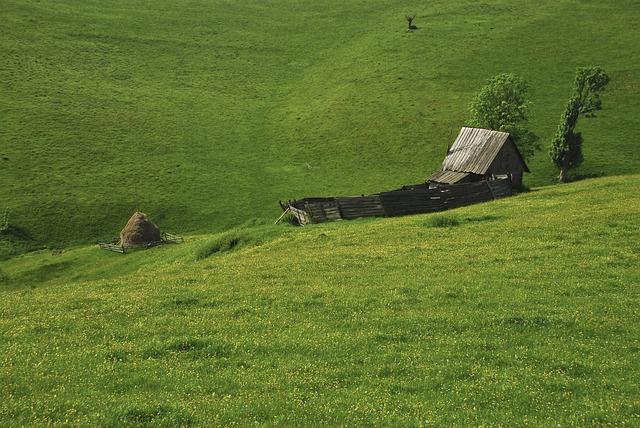 Landscape, Sheepfold, Rustic, Mountain